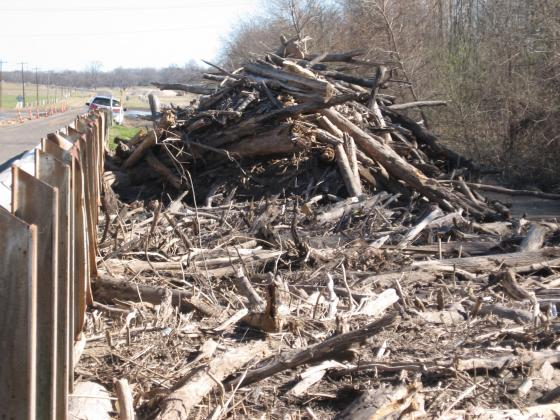 Logs and other debris piled around SH 71/ Courtesy Marna Martinez