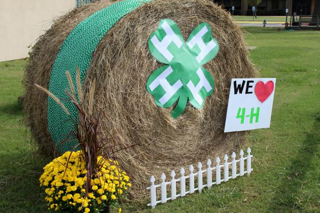 Hopkins County AgriLife Extension Office 4-H