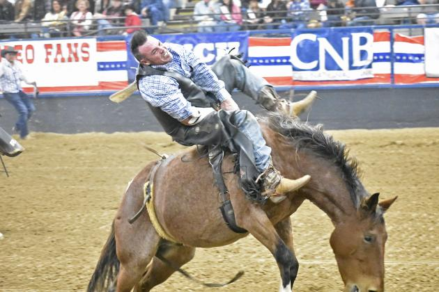 Eric Frazier of Santo, Texas lifts slightly into the air during the Bareback Riding event at the UPRA Final Saturday in the Hopkins County Regional Civic Center. Frazier would not place in the top four for the night. Staff photos by Todd Kleiboer