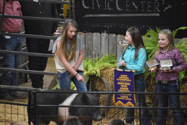 North Hopkins FFA member Kindal Shackelford and her swine were named Grand Champion at the Northeast Texas Junior Market Livestock Show last week at the Hopkins County Regional Civic Center. Shackelford also won Best Showmanship in her swine class.