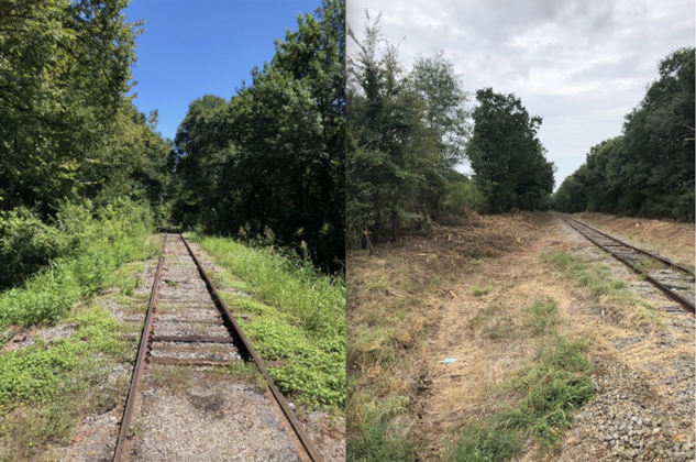 Saltillo Hwy 67 crossing before and after/ Courtesy Freedom Rail